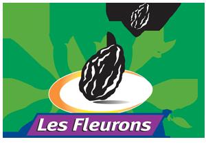 http://www.lesfleurons.com/wp-content/themes/fleurons/img/logo_fleurons.png